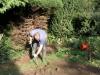 suburban-garden-makeover-in-prog-020