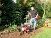 suburban-garden-makeover-in-prog-060