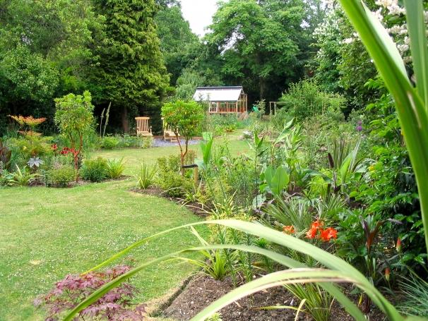 suburban garden makeover: maturing garden