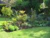 suburban-garden-makeover-maturing-010