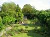 suburban-garden-makeover-maturing-040