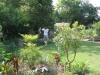 suburban-garden-makeover-maturing-060