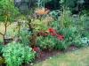 suburban-garden-makeover-maturing-130