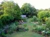 suburban-garden-makeover-maturing-150