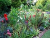 suburban-garden-makeover-maturing-160