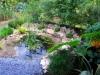 suburban-garden-makeover-mature-030