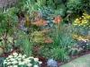 suburban-garden-makeover-mature-040
