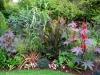 suburban-garden-makeover-mature-060