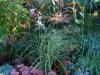 suburban-garden-makeover-mature-070