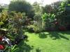 suburban-garden-makeover-mature-080