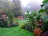 suburban-garden-makeover-mature-140