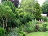 suburban-garden-makeover-mature-170