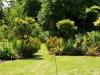 suburban-garden-makeover-mature-180