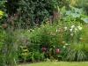 suburban-garden-makeover-mature-190