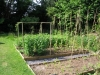 suburban-garden-makeover-vegetable-i