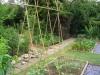 suburban-garden-makeover-vegetable-k