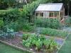 suburban-garden-makeover-vegetable-p