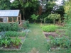 suburban-garden-makeover-vegetable-r