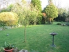 suburban-garden-makeover-before-1