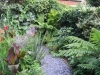 urban-garden-transformation-e