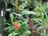 urban-garden-transformation-i