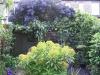 urban-garden-transformation-q