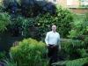 urban-garden-transformation-qa