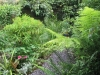 urban-garden-transformation-s
