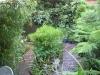 urban-garden-transformation-t