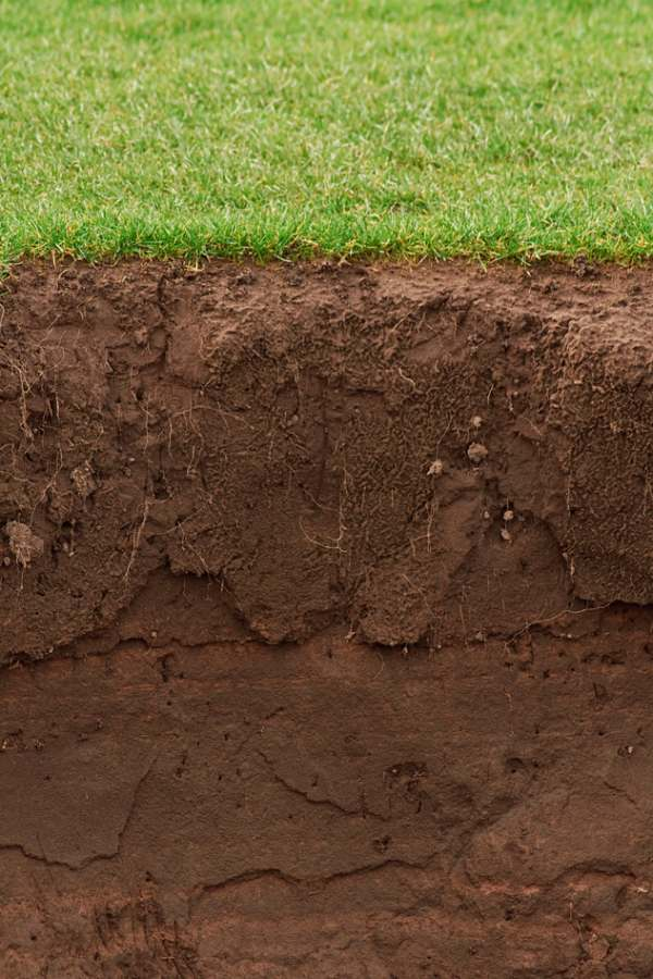 Soil texture: digging deeper into the soil in your garden