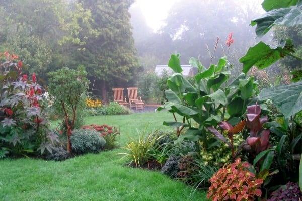 Suburban garden transformation: mature garden