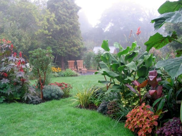 Suburban garden makeover: from lawn to lush