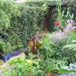 Urban garden transformation