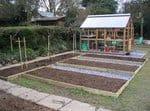 prepared seed beds