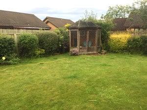 new garden - existing