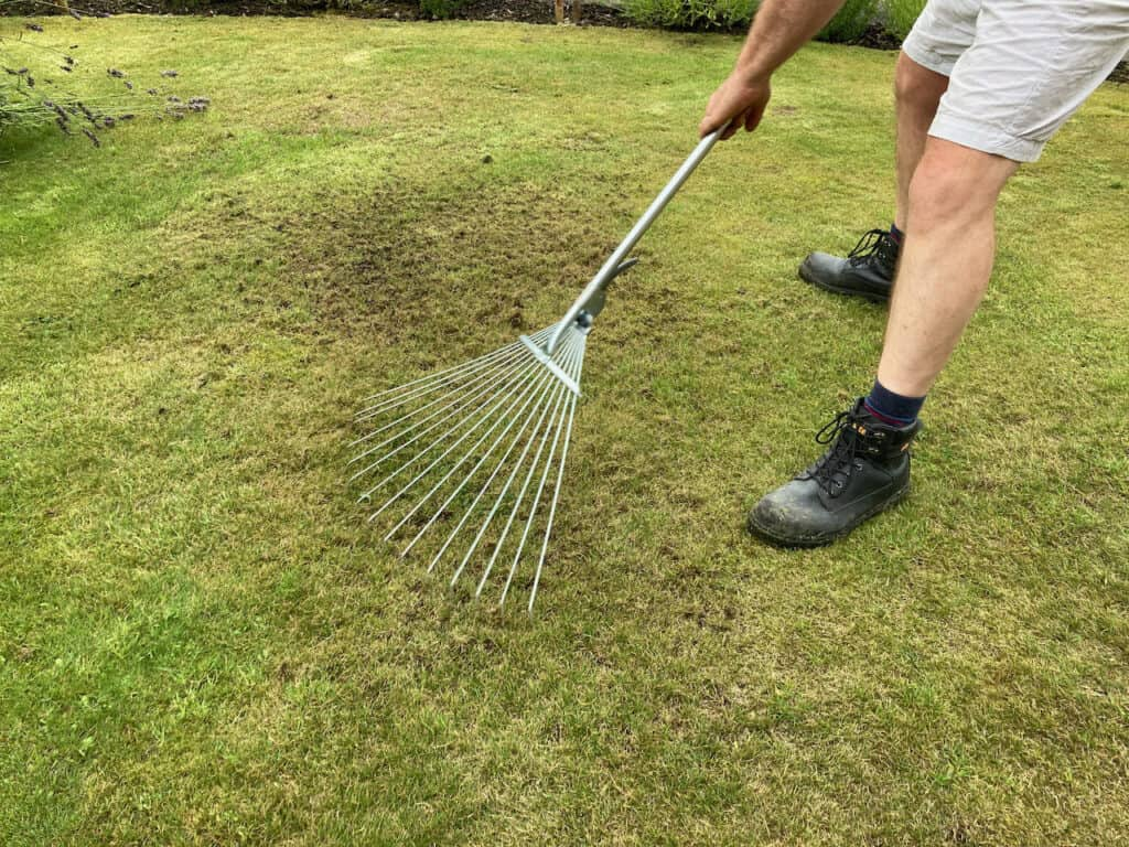 lawn care tips scarifying